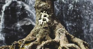 upgrade bitcoin taproot apa artinya